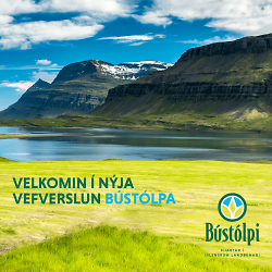 bustolpi-5770-kynning-a-vefverslun-web_instagram-facebook-1080x1080